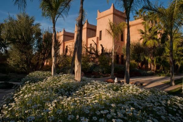 Tigmiza Suites & Pavillons (Marrakech, Morocco) 5