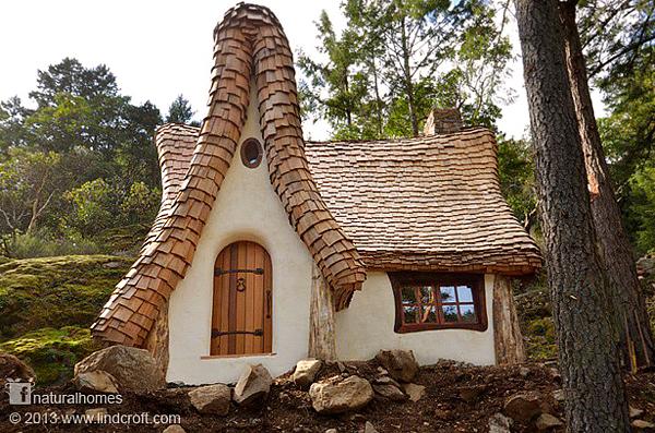 case povești