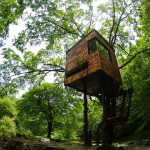 15 Most Awesome Tree Houses From Around The World