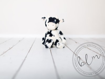 beautifullittlemoments-baby-photography-10-months-teddy-theme