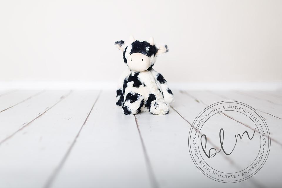 beautifullittlemoments-baby-photography-10-months-teddy-theme