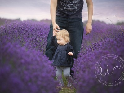 Lavender Fields | Banstead are NOW OPEN