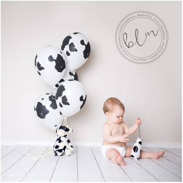 beautifullittlemoments-baby-photography-10-months-cow-theme