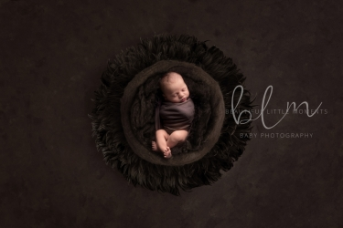 newborn-boy-dark-brown-no-feathers-crop1