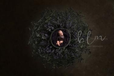 newborn-boy-nest-desat-grey-purple2