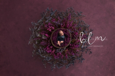 newborn-boy-nest-purple