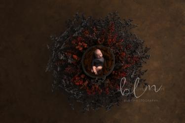 newborn-boy-nest-red