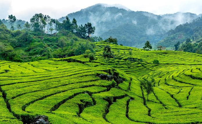 11 Experiences You Must Have In Bandung Indonesia A Life Beautifully Travelled