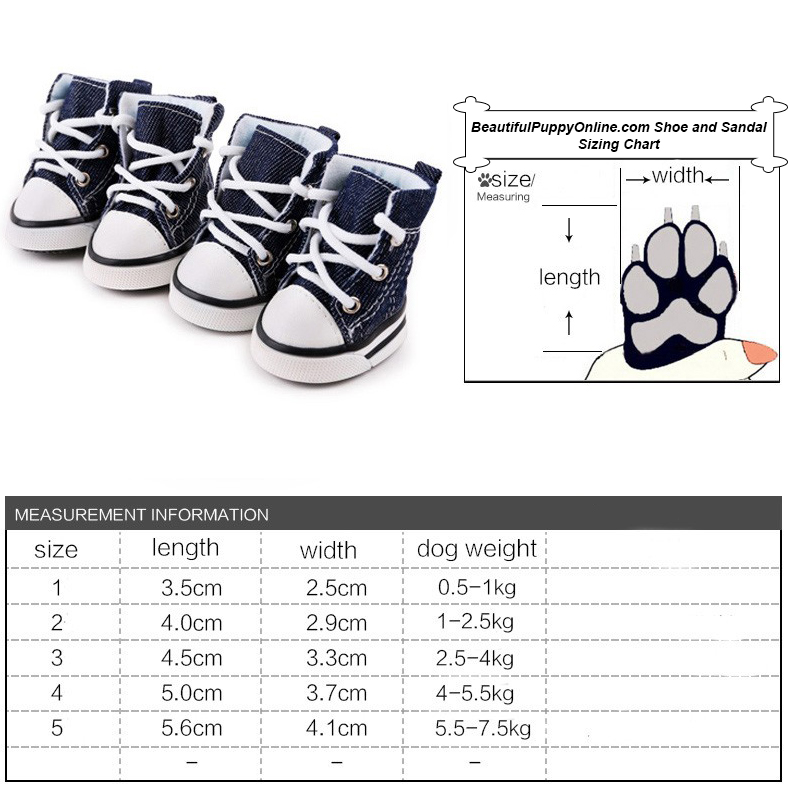 Blue Canvas Converse Style Dog Sneakers Shoes