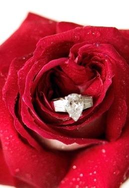 La pluie de bijoux tendance 2012