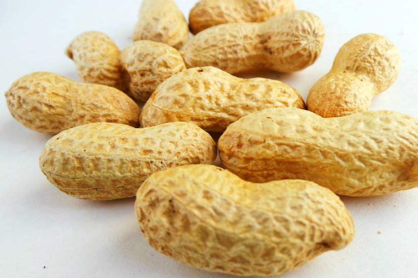 peanuts 1