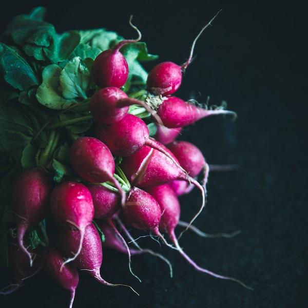 20 alkaline vegetables to eat on the ketogenic diet