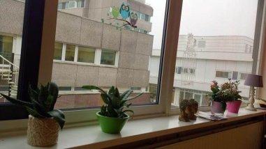 uitzicht ziekenhuis eetzaal