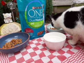 Purina ONE DualNature 7
