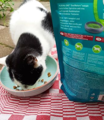 Purina ONE DualNature spirulina