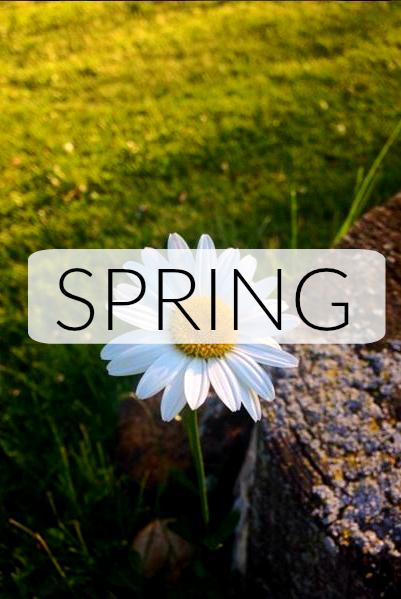 springbutton
