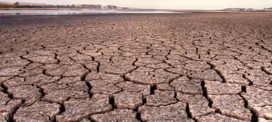 dry_cracked_skin