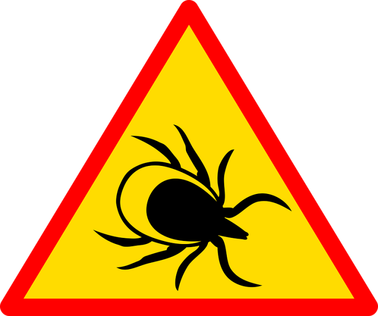 Staying safe from tick bites and Lyme disease sign