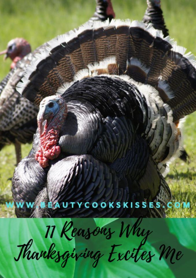 11 Reasons Why Thanksgiving Excites Me