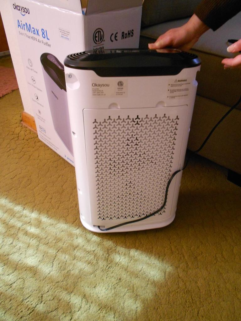 Air Purifier Back