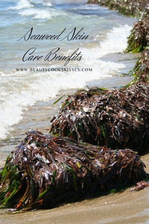 Seaweed Skin Care Savvy_ What You Need to Know