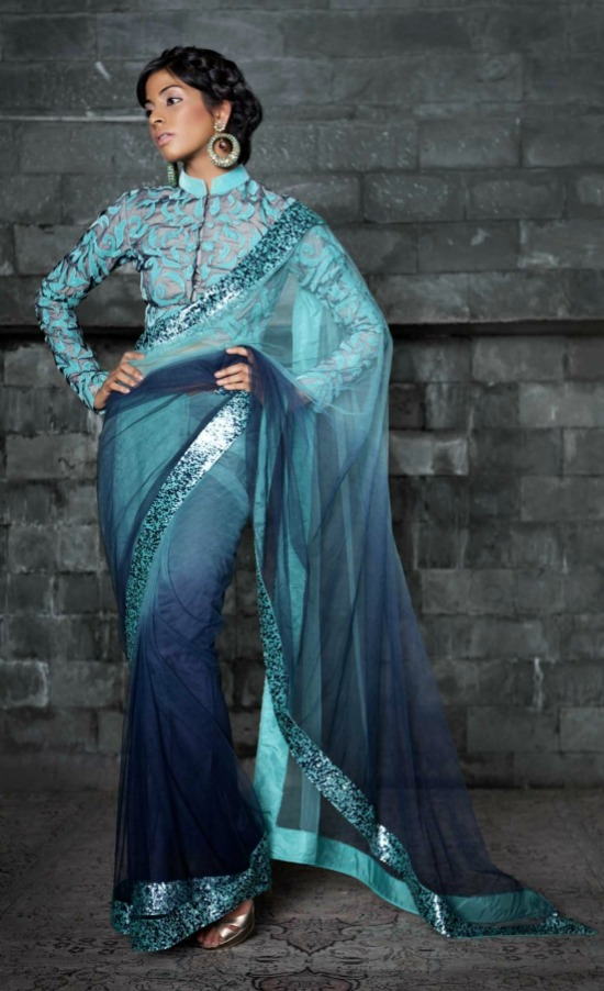 Ombre Dyed Net SareeWith High Collar Full Sleeve Blouse