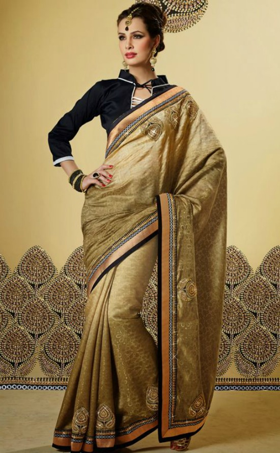 Divine Beige and Gold Color Embroidered Saree With Black Full Sleeve Collar Neck Blouse