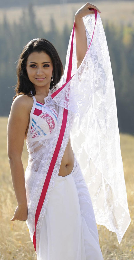 Trisha In White Net Saree