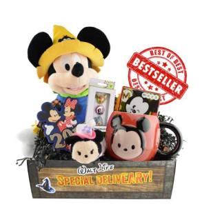 Walt Life subscription box for kids Official Disney subscription box - unboxing subscription box review | beautyiscrueltyfree.com