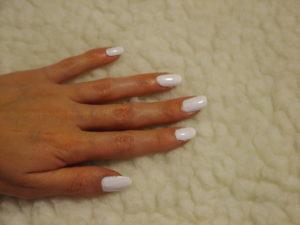 bijeli