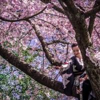 Des rituels beauté à la japonaise