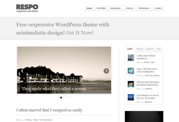 respo-theme-wordpress-blog-gratuit