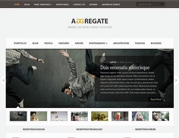 aggregate-theme-wordpress-premium