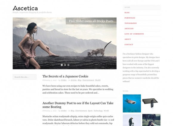 ascetica-theme-wordpress-blog-magazine-gratuit