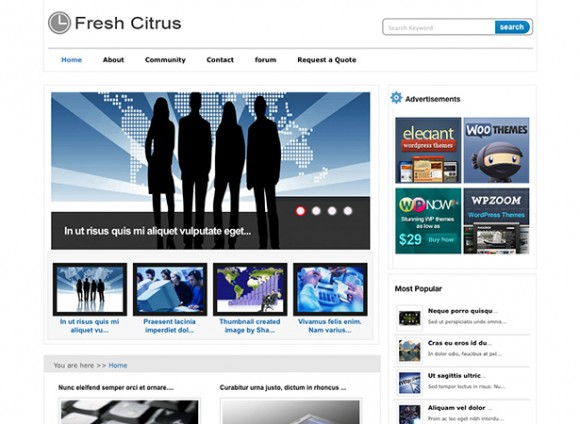 freshcitrus-theme-wordpress-blog-magazine-gratuit