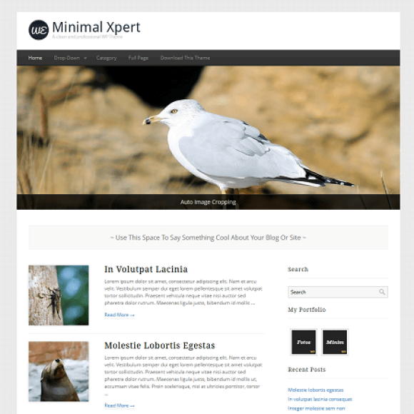 minimalxpert-theme-wordpress-magazine-blog-gratuit