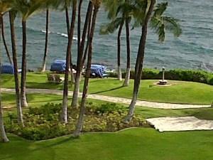 22 Maui