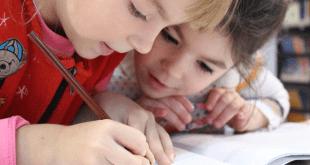 escolas ensino fundamental em são paulo como escolher?