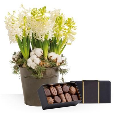 Livraison Express Jardin Dhiver Et Ses Chocolats