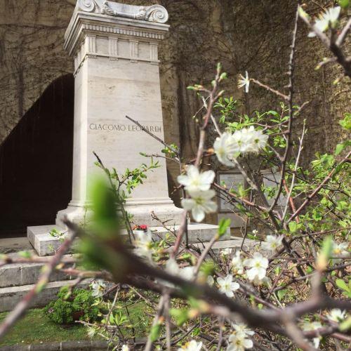Vergiian park 01 leopard tomb