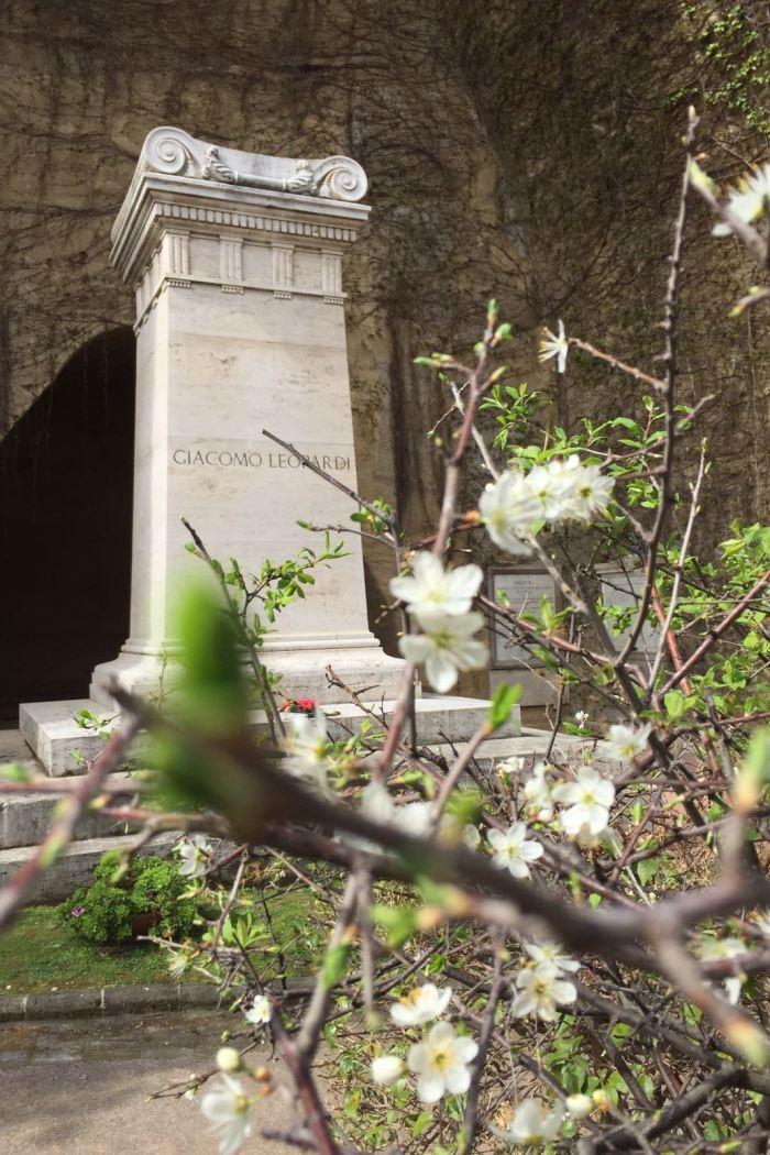 Parco Vergiliano:  Alla scoperta di un tesoro nascosto nel Cuore di Napoli