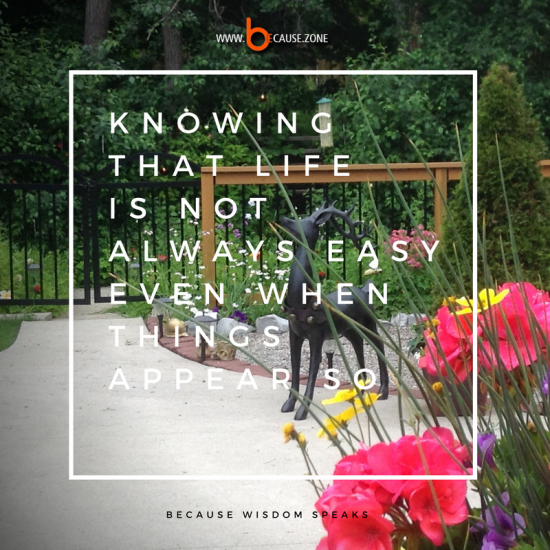 knowing that life is not @ www.because.zone
