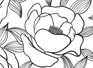 Dover Creative Haven Floral Designs Adult Coloring Page