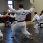 beccles-taekwondo-demo16
