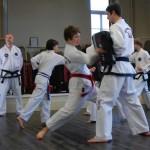 beccles-taekwondo-demo20