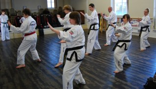 beccles-taekwondo-demo23