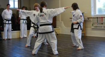 beccles-taekwondo-demo30