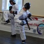 beccles-taekwondo-demo64