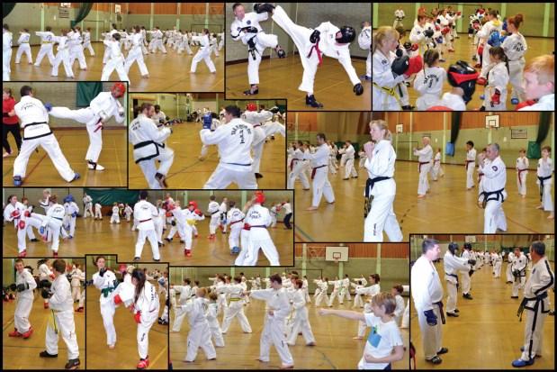 BTKD-taekwondo-grading-web