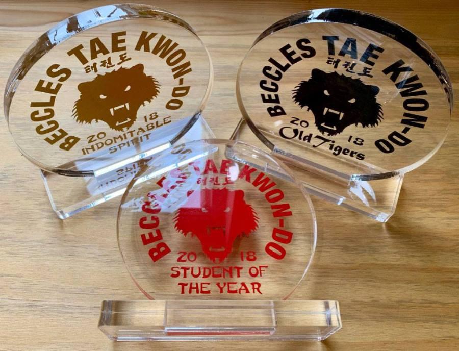 beccles taekwondo awards